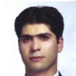 محمد انیسی